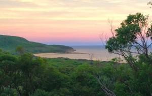 Beach, bush and bay family retreat – killcare beach