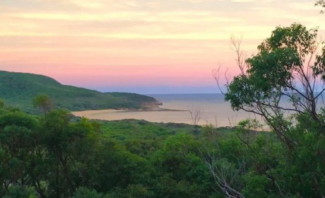 Beach, bush and bay family retreat – killcare beach
